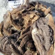image of fleeces