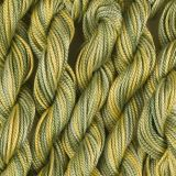 65 Roses® 'Miss Lemon Abelia' - Thread, Tranquility (fine cord thread)