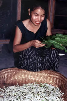 women feeding silk worms